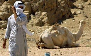 Deux personnes de nationalité brésilienne ont été enlevées dimanche par des bédouins dans la péninsule du Sinaï en Egypte, ce qui constitue le troisième rapt de touristes depuis début février dans cette région, selon des sources sécuritaires.