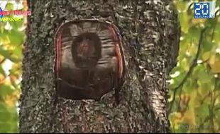 Le visage de Jésus est apparu sur le tronc d'un arbre en Russie.