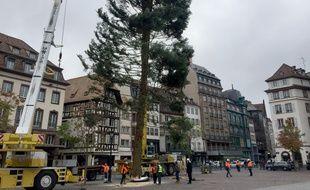 Installation du grand sapin place Kléber à Strasbourg le 29 octobre 2018.