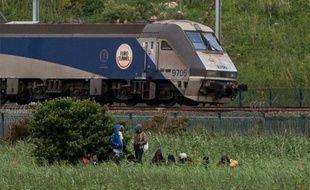 Des migrants sont installés près de l'Eurotunnel, à Coquelles près de Calais, le 29 juillet 2015