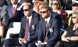 Le prince Harry (à dr.) et son frère William à Vimy, le 9 avril 2017.