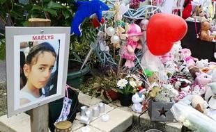 Un dernier hommage sera rendu samedi à 14 h 30 à la Tour-du-Pin, dans le nord Isère. Illustration.