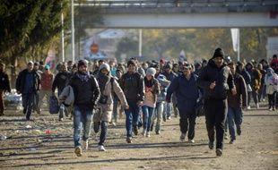 Réfugiés et migrants traversent la frontière entre la Slovenie et l'Autriche à Sentilj, le 3 novembre 2015