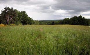 Les Parcs naturels régionaux de France maintiennent leur opposition aux gaz de schiste, prenant à contre-pied un rapport de l'Agence internationale de l'Energie (AIE) favorable à l'exploitation de ces gaz, ont-ils annoncé mercredi.