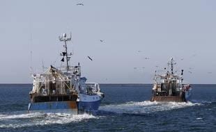 Des bateaux de pêche, ici à Cherbourg. (illustration)