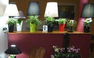 Des pieds de lampes qui font office de pots de fleurs, c'est l'une des idée qui a été récompensée en 2014.