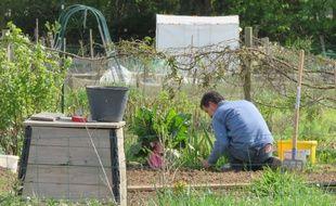 Les associations environnementales réclament un grand plan pour une agriculture vivrière.