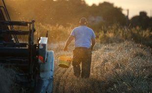Le Pin, le 14 juin 2014. Un agriculteur récolte dans son champ à la tombée du soir.