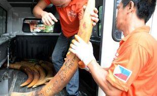 Les autorités philippines ont entamé vendredi la destruction de cinq tonnes de défenses d'éléphants lors d'une cérémonie officielle destinée à prouver la volonté du pays à se débarrasser de sa réputation de plaque tournante en Asie pour le trafic d'ivoire venu d'Afrique.