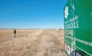 La réserve naturelle a été créée en 2001 pour protéger les dernières surfaces du milieu entretenu par l'élevage ovin.
