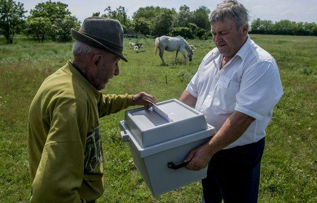 Une urne mobile, pratique pour ce fermier hongrois vivant à Szentkiraly.