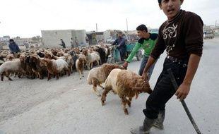 Le médiateur international Lakhdar Brahimi a annoncé mercredi avoir obtenu l'accord du régime et de chefs rebelles pour une trêve en Syrie pendant la fête musulmane d'Al-Adha qui débute vendredi, mais le scepticisme prévaut quant à sa mise en oeuvre.