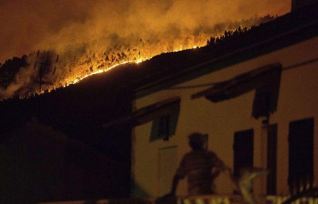 Un violent feu de forêt au Portugal a fait au moins 43 morts, selon le tout dernier bilan.
