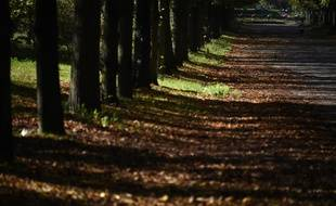 Bois de Vincennes, à Paris.