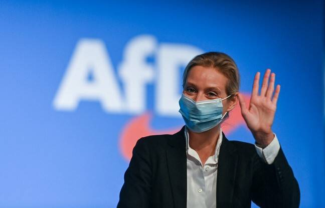 648x415 alice weidel copresidente groupe parlementaire afd 28 novembre 2020