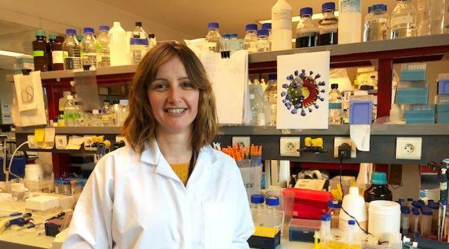 L'institut Pasteur de Lille va chercher un antiviral contre le coronavirus