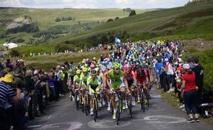 Le peloton lors de la 1re étape du Tour de France, le 5 juillet 2014 en Angleterre.