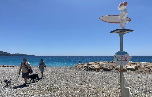La nouvelle plage pour chiens a été inaugurée le 23 juin 2021 à Nice