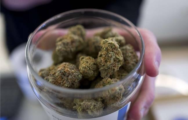 Canada: Un gâteau servi lors d'une fête d'école contenait du cannabis