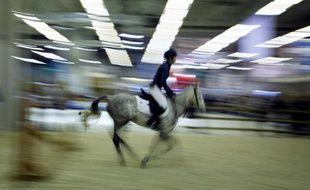 Voltige, polo, dressage... le Salon du cheval de Paris mettra chaque jour à l'honneur une des neuf disciplines équestres des Jeux équestres mondiaux 2014, au parc des expositions de Paris-Nord Villepinte (Seine-Saint-Denis).
