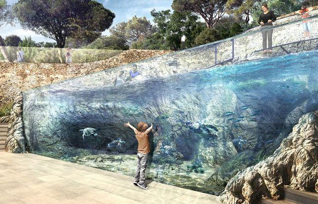 Le bassin de 160m3 sera visible par le public