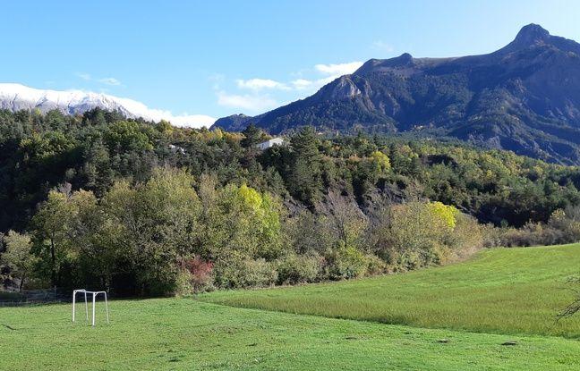 Une meute de loup est installée sur les hauteurs de Draix, dans l'arrière-pays dignois.