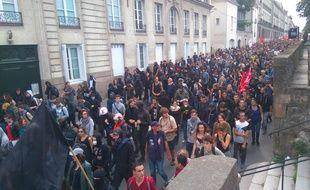 Les manifestants le long du cours Saint-André à Nantes.