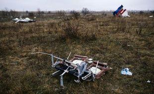 Des débris du vol MH17 de la Malaysia Airlines près du village ukrainien de Hrabove le 10 novembre 2014
