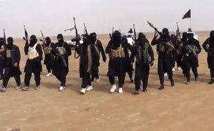 Photo prise à partir d'une vidéo de propagande diffusée par l'Etat islamique en Irak et au Levant (EIIL), le 11 juin 2014, et montrant un groupe de combattants réunis dans la province de Ninive en Irak