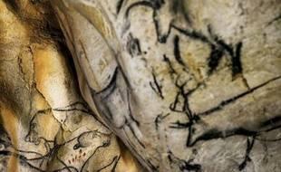 Peintures d'animaux sur les parois de la Grotte Chauvet, à Vallon-Pont-d'Arc, le 13 juin 2014