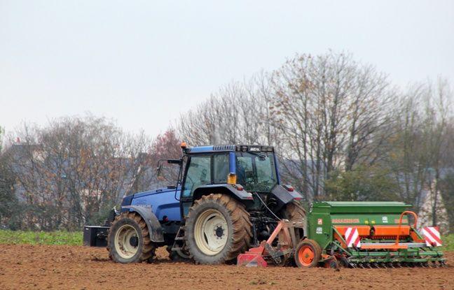 Bretagne: Triskalia et D'aucy s'allient pour devenir un géant de l'agroalimentaire