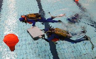 Les plongeurs ont dérivé pendant deux heures (illustration).