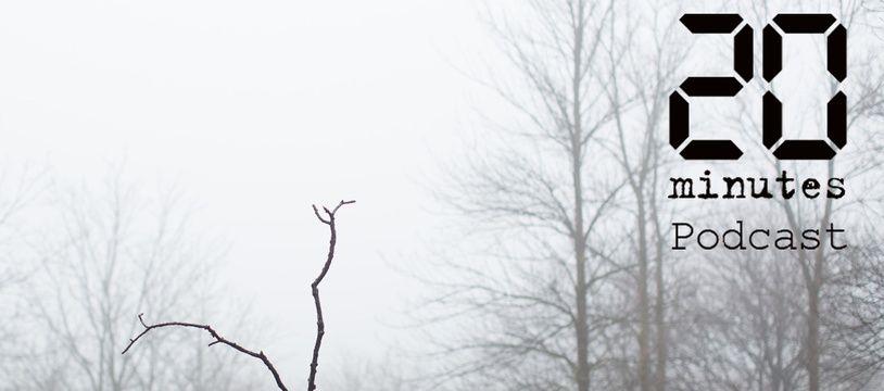 Illustration d'une personne dans les bois, dans la brume, tenant une branche à la main