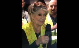 Brigitte Bardot a rendu visite à des «gilets jaunes» à Saint-Aygulf (Var), le 17 février 2019.