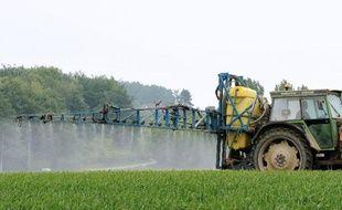 Epandange de pesticides le 11 juin 2013 à Godewaersvelde, dans le nord de la France