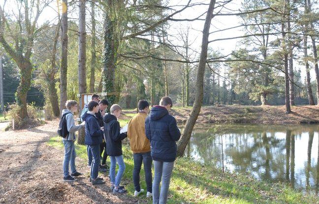 Des élèves du lycée Théodore Monod, au Rheu, ont effectué des recherches et relevés à l'étang de la Petite Perelle, à Saint-Jacques-de-la-Lande.