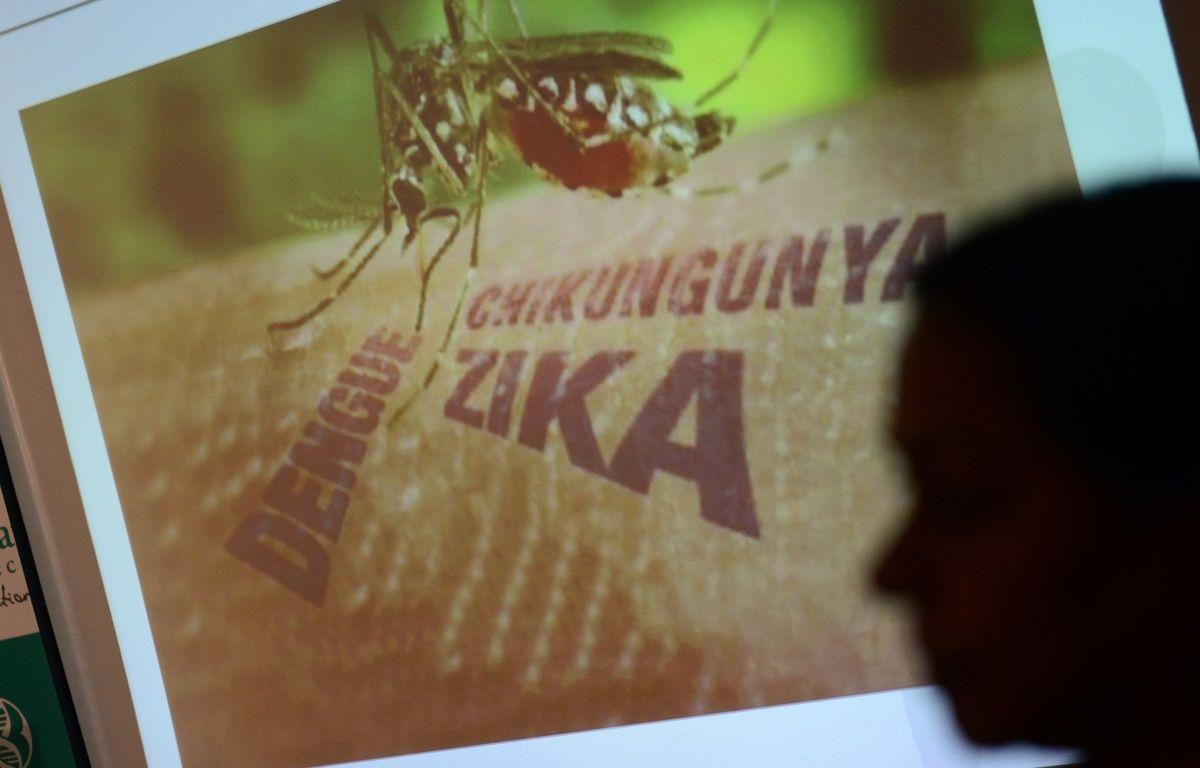 En Inde, des laboratoires tentent de développer un vaccin contre le virus Zika. – NOAH SEELAM / AFP