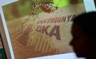 En Inde, des laboratoires tentent de développer un vaccin contre le virus Zika.