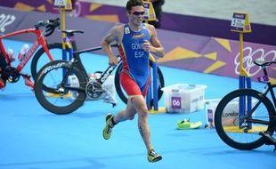 Les World Series 2013 de triathlon, des championnats du monde disputés en huit manches, débutent samedi à Auckland, en Nouvelle-Zélande, sans l'Anglais Jonathan Brownlee ni la Suédoise Lisa Norden, les tenants du titre.