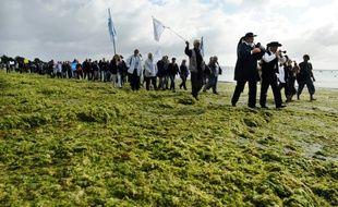 un deuxième plan de lutte contre les algues vertes sur les côtes bretonnes succèdera au premier pour la période 2017-2021