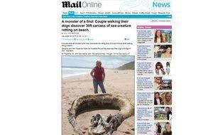 Capture d'écran du site Mail Online représentant une photo du monstre marin échoué sur une plage d'Ecosse, le 20 juillet 2011.