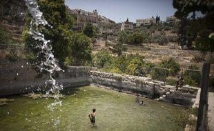 Des enfants palestiniens jouent dans les sources antiques du village de Battir, en Cisjordanie, le 17 juin 2012.
