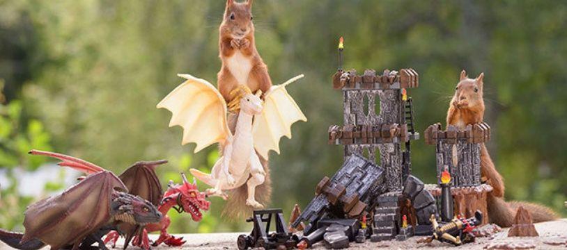 Le photographe suédois Geert Weggen est un grand fan de la série. En attirant des écureuils avec des noisettes, il a réussi quelques photos épiques. C'est notre premier cadeau...