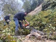Deux amis tronçonnent les branches d'un arbre au lendemain d'une coulée de boue qui a enseveli un homme de 78 ans jusqu'aux épaules, chemin du Vallon des Vaux, à Cagnes-sur-Mer, ce samedi 23 novembre.