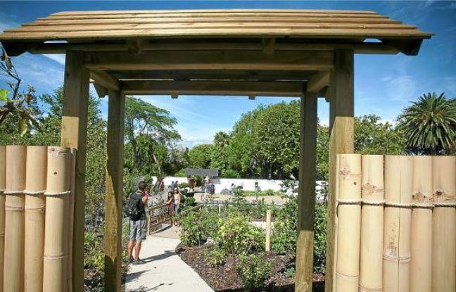 Le nouveau jardin japonais du parc Borely (8e) s'étend sur 1800m2.