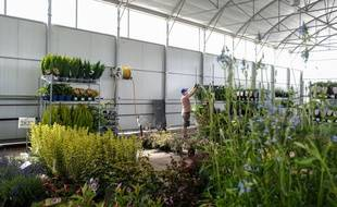 Les entreprises créées dans les territoires zéro chômeurs peuvent par exemple concerner l'entretien des espaces verts.