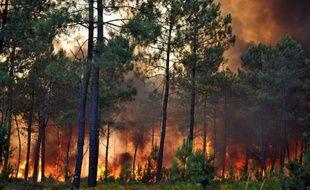 Les pompiers devaient lutter toute la nuit de jeudi à vendredi contre l'incendie qui a dévasté une forêt de pins à proximité de la station balnéaire de Lacanau sur la côte Atlantique (Gironde), détruisant en quelques heures plus de 400 hectares de végétation.