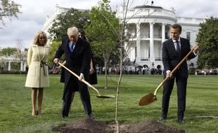 Donald Trump et Emmanuel Macron plantent un chêne offert par le président français près de la Maison-Blanche, le 23 avril 2018.