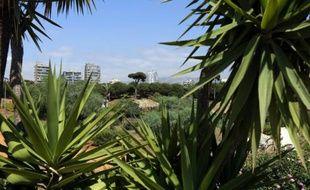 Une vue partielle du parc de Horch Beyrouth, le 21 mai 2015 au Liban
