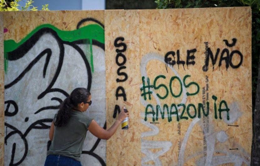 Incendie en Amazonie : Les solutions des ONG pour protéger la forêt